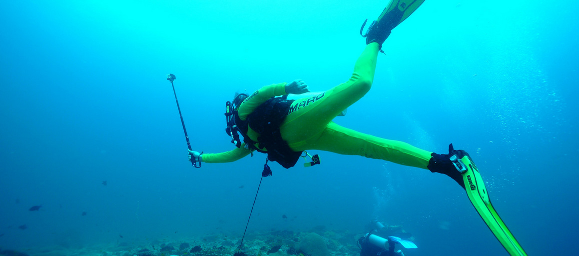 malediven hookline