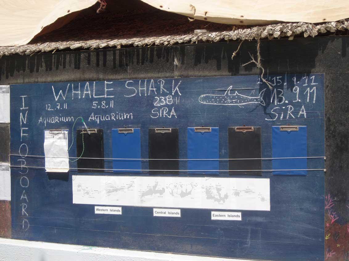 Whaleshark Scoreboard von Guitarfish